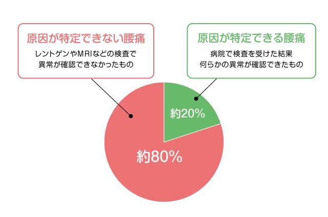 腰痛の原因の割合グラフ