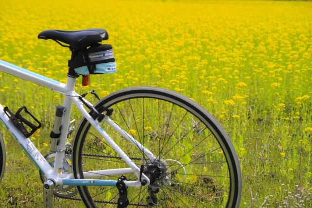 腰痛克服 自転車 サイクリング